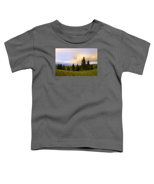 Warm The Soul Toddler T-Shirt
