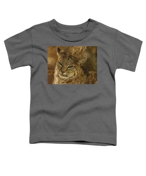 Wary Bobcat Toddler T-Shirt