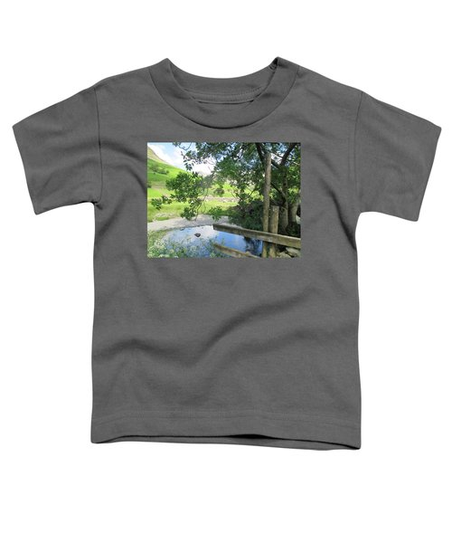 Wasdale Head Stile Toddler T-Shirt by Kathy Spall