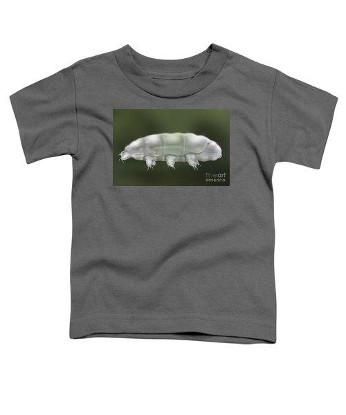 Water Bear Tardigrada - Waterbear Tardigrade  - Scientific Illustration Toddler T-Shirt