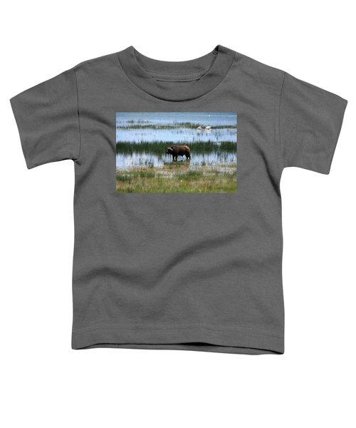 Water Buffalo At Lake Nakuru Toddler T-Shirt