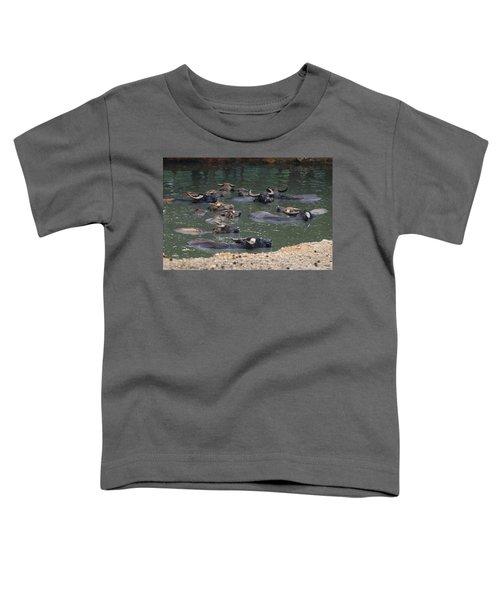 Water Buffalo Toddler T-Shirt