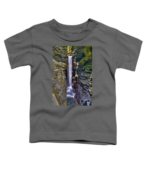 Watkins Glen Cascade Toddler T-Shirt