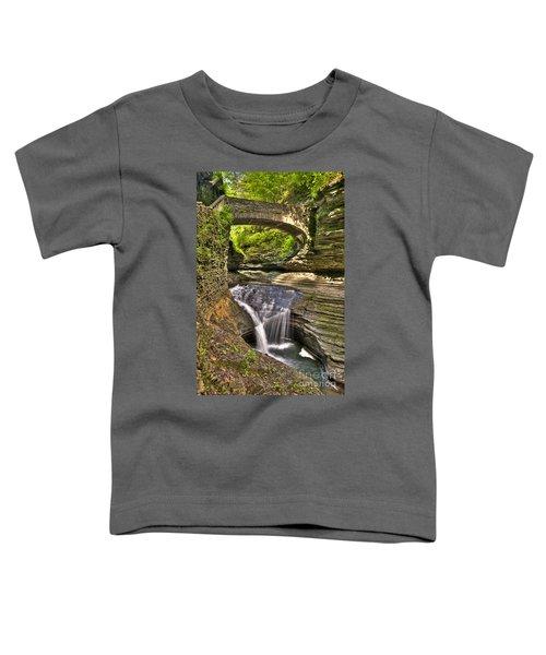 Watkins Glen Waterfalls Toddler T-Shirt