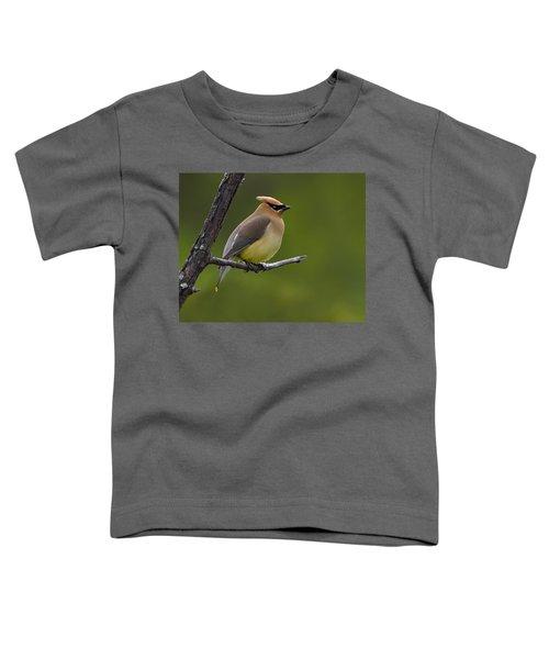 Wax On Toddler T-Shirt