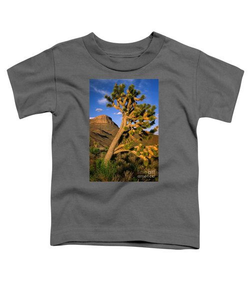 West Grand Canyon Toddler T-Shirt