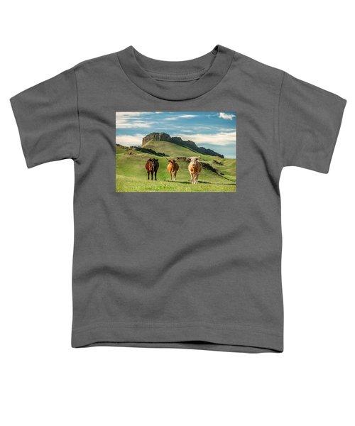 Western Longhorns Toddler T-Shirt