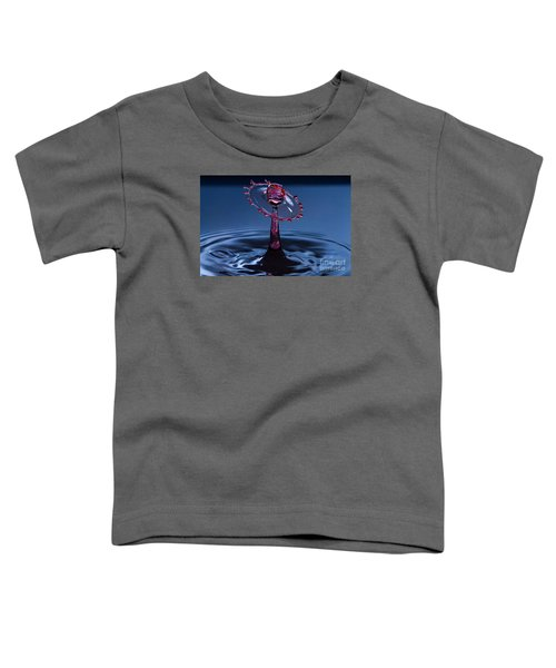 Wheel Of Confusion Toddler T-Shirt