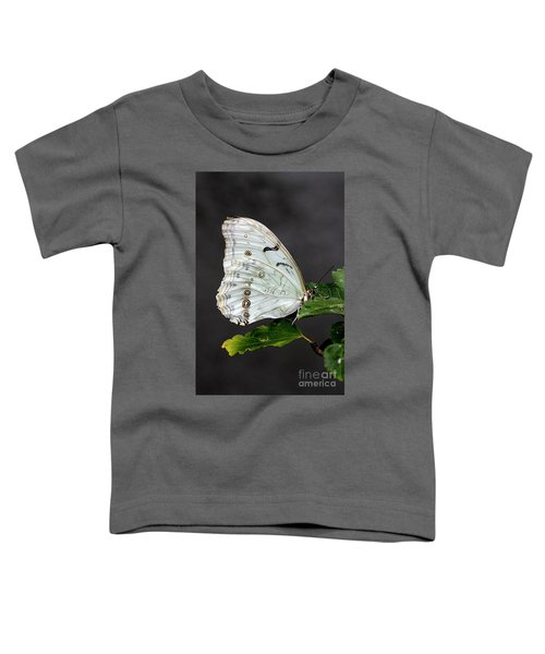 White Butterfly Toddler T-Shirt