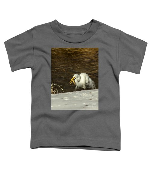 White Egret Snowy Bank Toddler T-Shirt by Robert Frederick