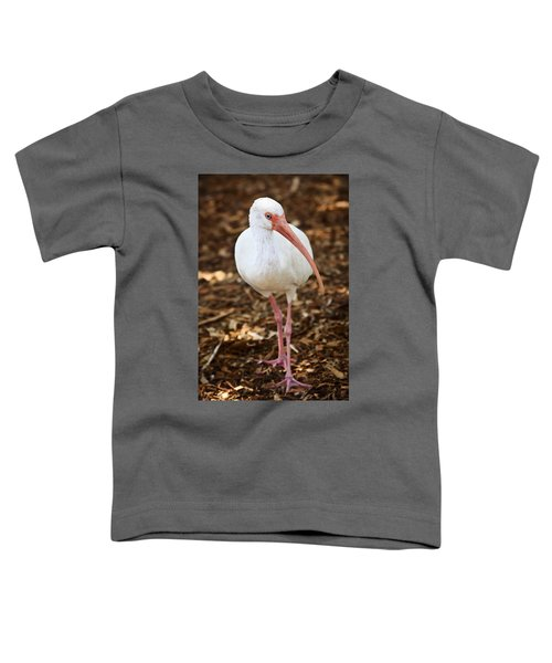 White Ibis Toddler T-Shirt