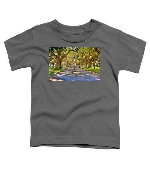 White Point Gardens At Battery Park Charleston Sc Hdr Toddler T-Shirt