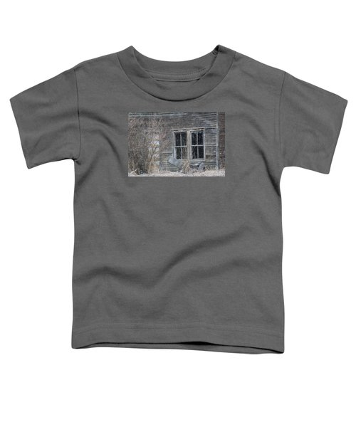 Window To The Old Soul Toddler T-Shirt