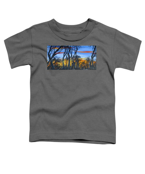 Wisconsin Creek Spooks Toddler T-Shirt