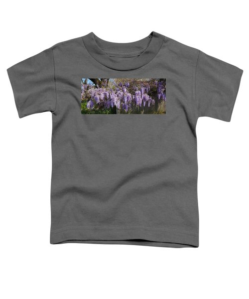 Wisteria Flowers In Bloom, Sonoma Toddler T-Shirt