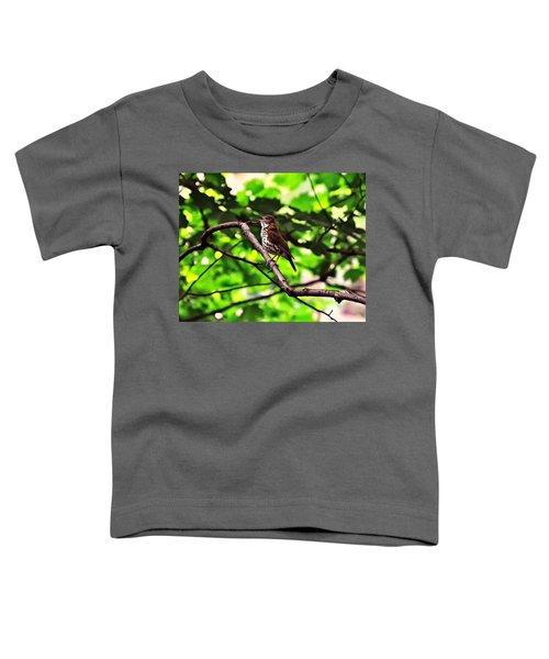 Wood Thrush Singing Toddler T-Shirt