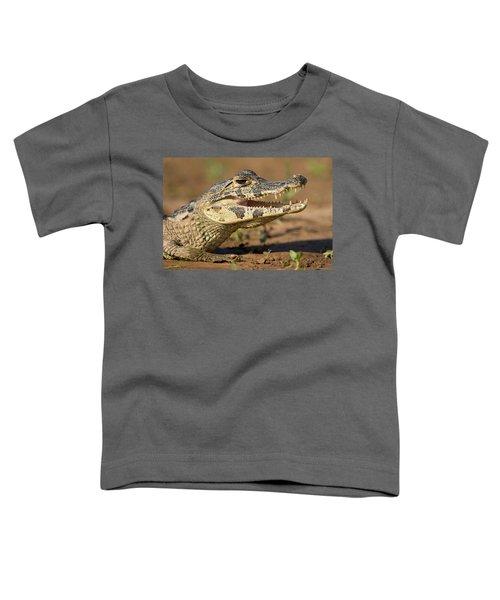 Yacare Caiman Caiman Crocodilus Yacare Toddler T-Shirt