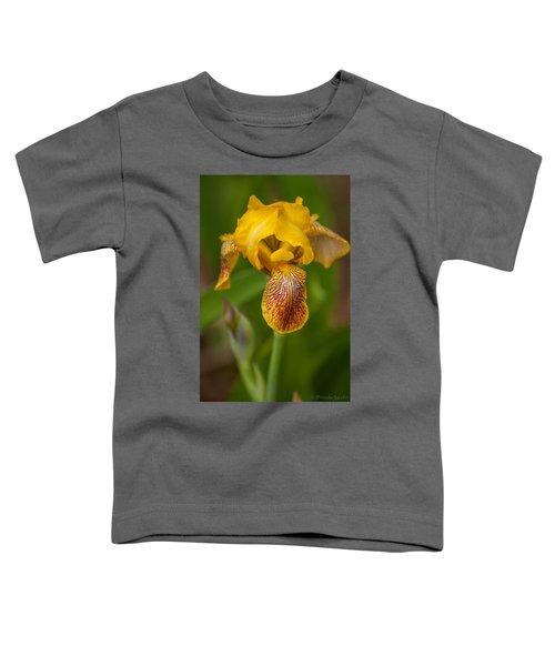 Yellow Bearded Iris Toddler T-Shirt