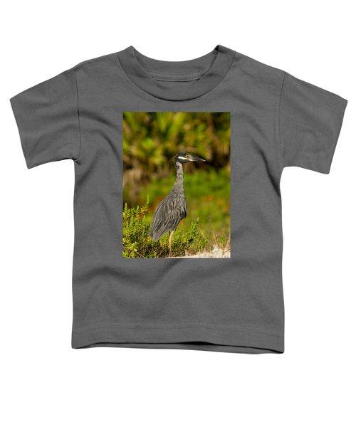 Yellow Crowned Night Heron Dune Watch Toddler T-Shirt