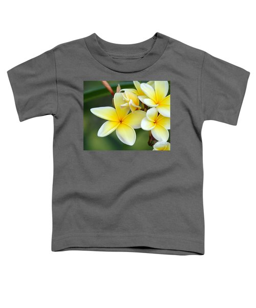 Yellow Frangipani Flowers Toddler T-Shirt