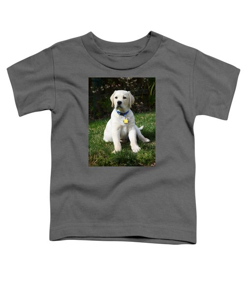 Yellow Lab Puppy Standing Guard  Toddler T-Shirt