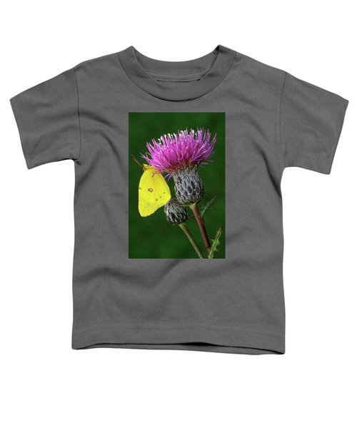 Yellow Sulfur Butterfly On Thistle Toddler T-Shirt