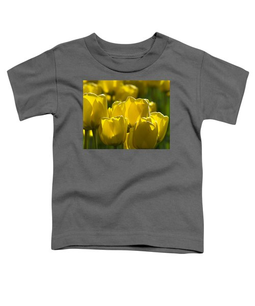 Yellow Tulips  Toddler T-Shirt