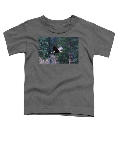 Yosemite Bald Eagle Toddler T-Shirt