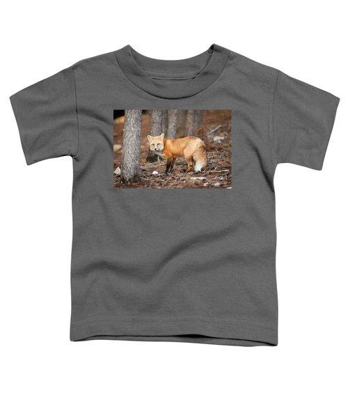 You Caught Me Toddler T-Shirt