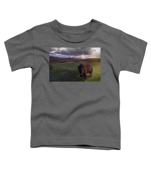You May Not Pass Toddler T-Shirt