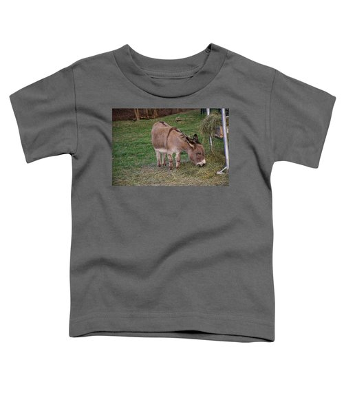 Young Donkey Eating Toddler T-Shirt