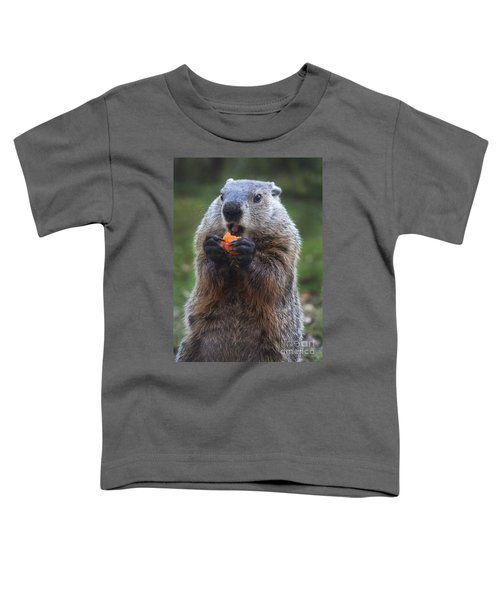 Yum-yum Toddler T-Shirt by Paul W Faust -  Impressions of Light