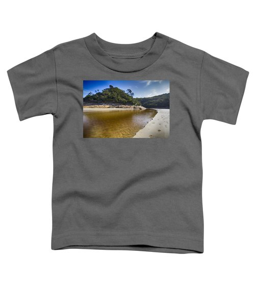 Beach Erosion Toddler T-Shirt