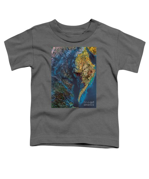 Chesapeake Bay Toddler T-Shirt