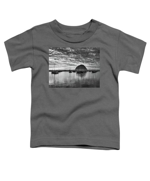 Morro Bay On Fire Toddler T-Shirt