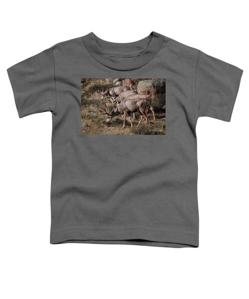 Mule Deer Bucks Toddler T-Shirt