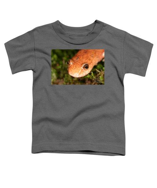Spring Salamander Toddler T-Shirt by Ted Kinsman