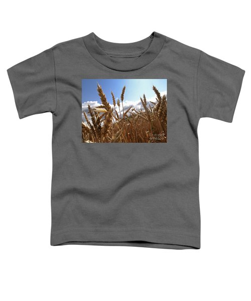 Field Of Wheat Toddler T-Shirt