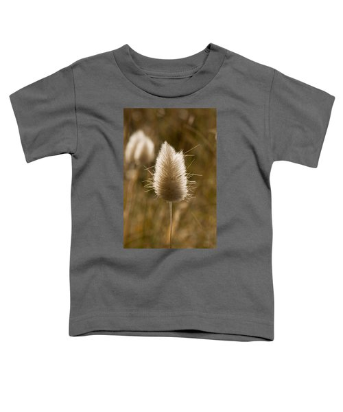 A Beautiful Seed Pod With Beautiful Sun Reflection Toddler T-Shirt