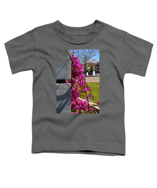 Ave Maria Walk Toddler T-Shirt