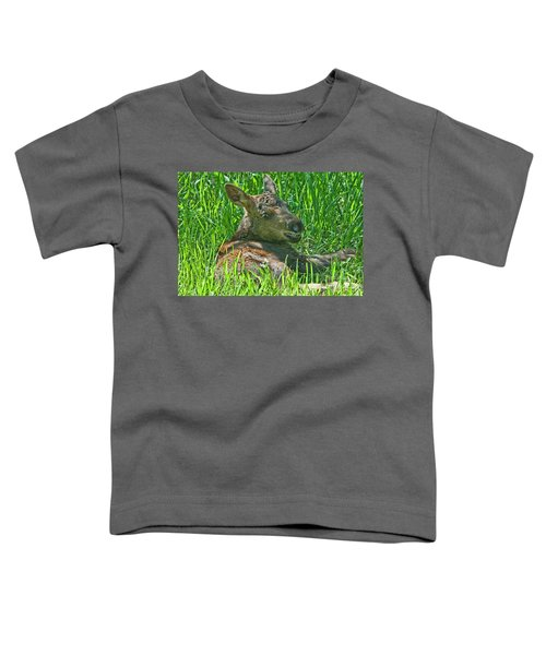 Baby Moose Toddler T-Shirt