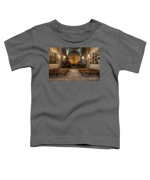 Baroque Church In Savoire France 4 Toddler T-Shirt