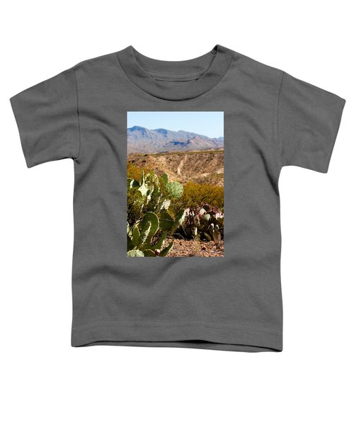 Big Bend Toddler T-Shirt