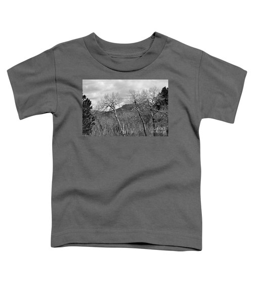 Black And White Aspen Toddler T-Shirt