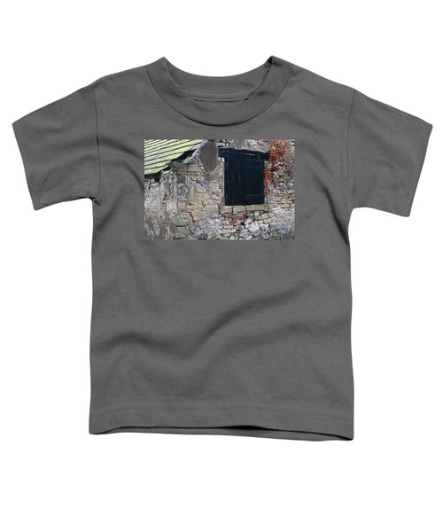 Black Boarded Window Toddler T-Shirt