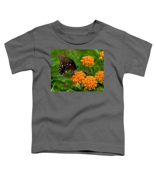 Black Swallowtail Visiting Butterfly Weed Din012 Toddler T-Shirt