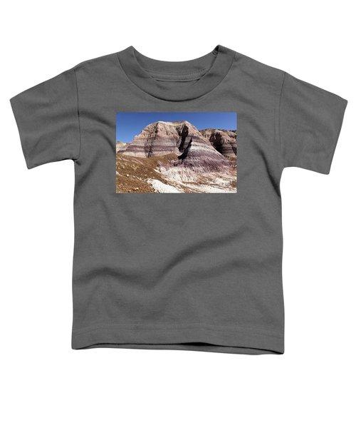 Blue Mesa Castle Toddler T-Shirt