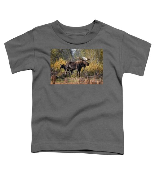 Bull Tolerates Calf Toddler T-Shirt
