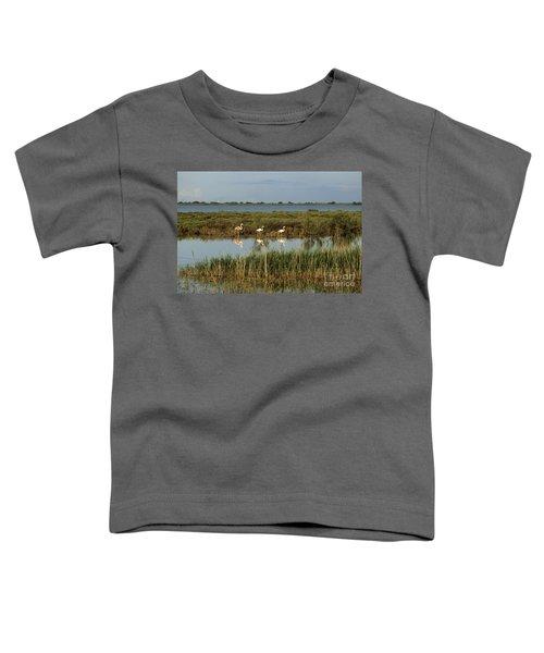 Camargue.etang Of Vacarres Toddler T-Shirt