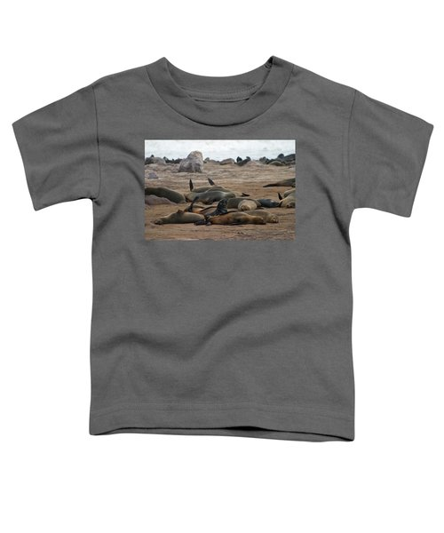 Cape Cross Seal Colony Toddler T-Shirt